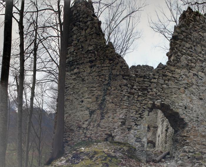 Burgruine von Höfen