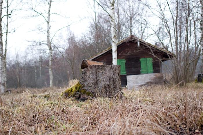 Kleines Waldhaus