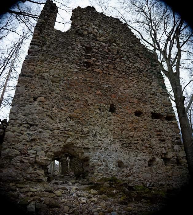 Ganze Rückseite der Burgruine in Höfen